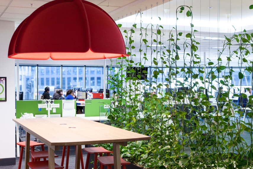 The Green Facade increases productivity, staff retention and the feeling of wellbeing.