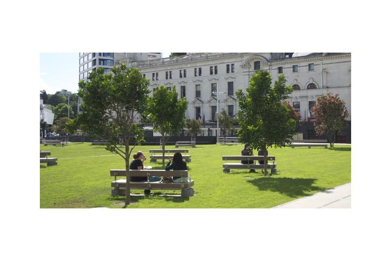 Aeotea Square, planting of Kohekohe and Pohutukawa trees