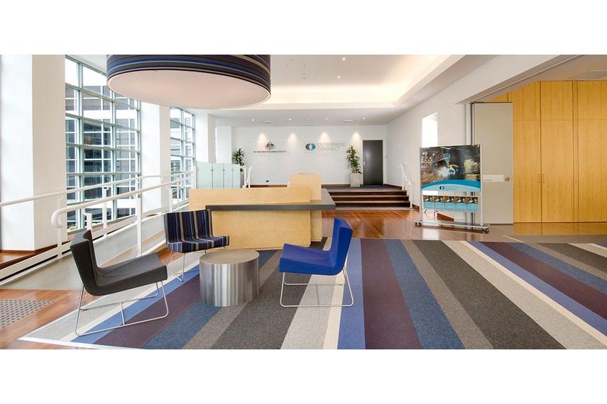 Tretford rugs at Dept of Innovations